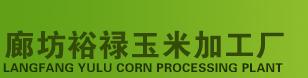 专业玉米面厂家